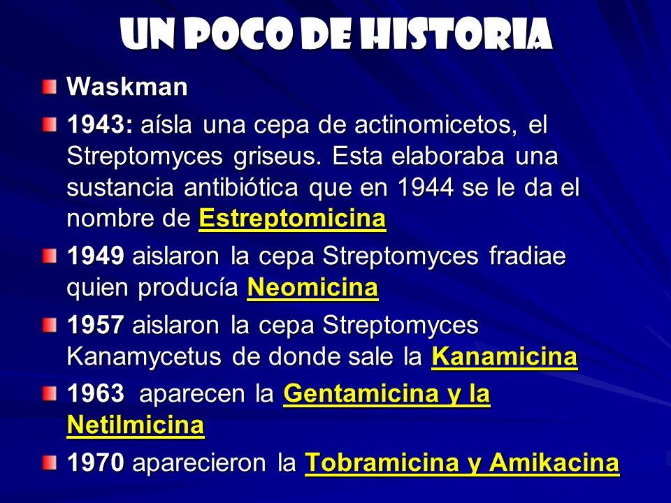 Un poco de historia Waskman