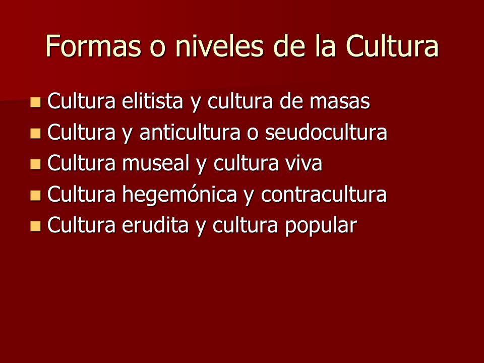 Formas o niveles de la Cultura