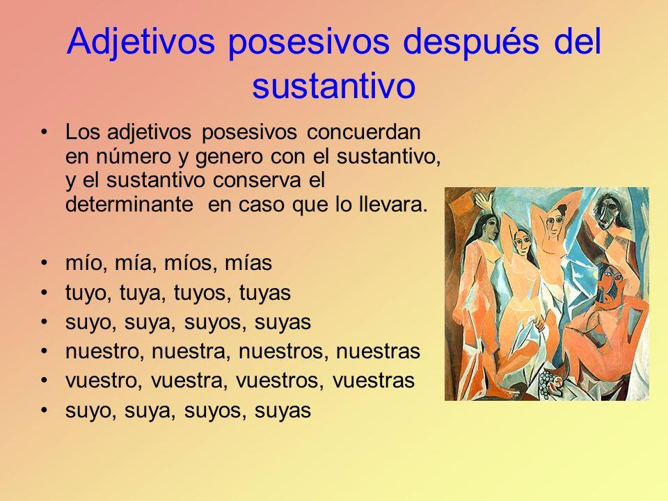 Adjetivos posesivos después del sustantivo