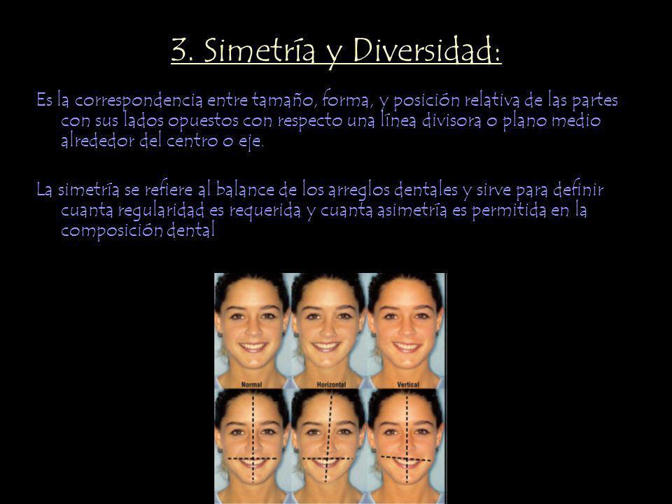 3. Simetría y Diversidad:
