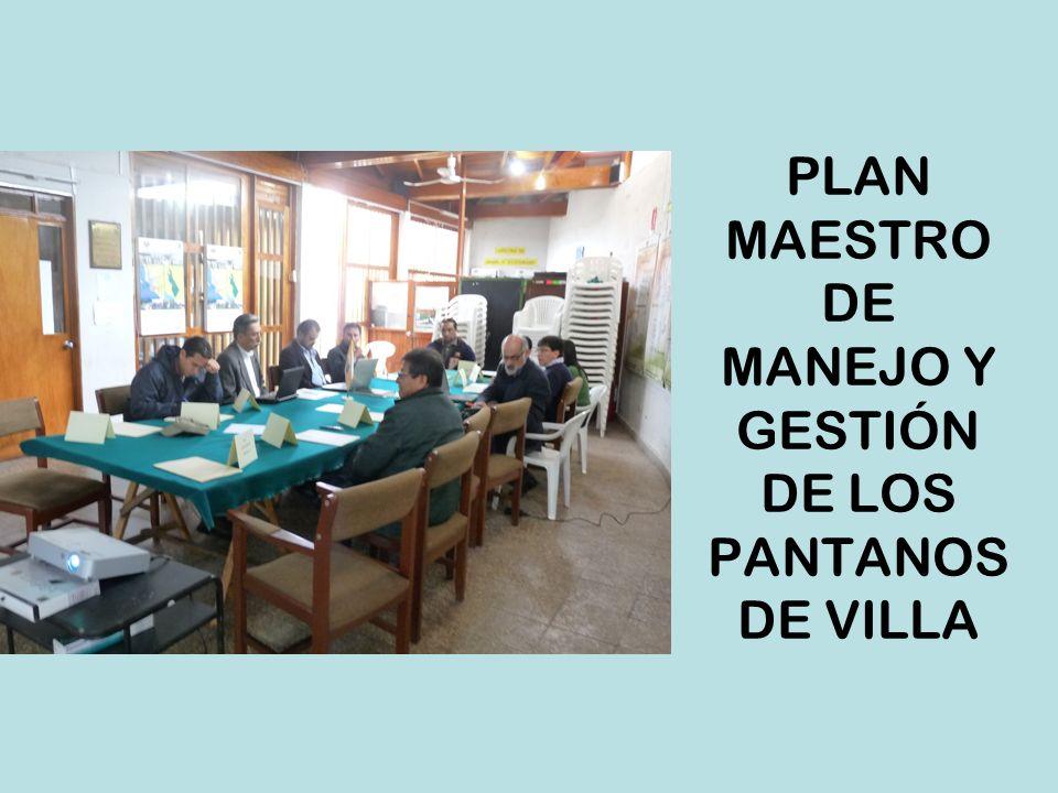PLAN MAESTRO DE MANEJO Y GESTIÓN DE LOS PANTANOS DE VILLA
