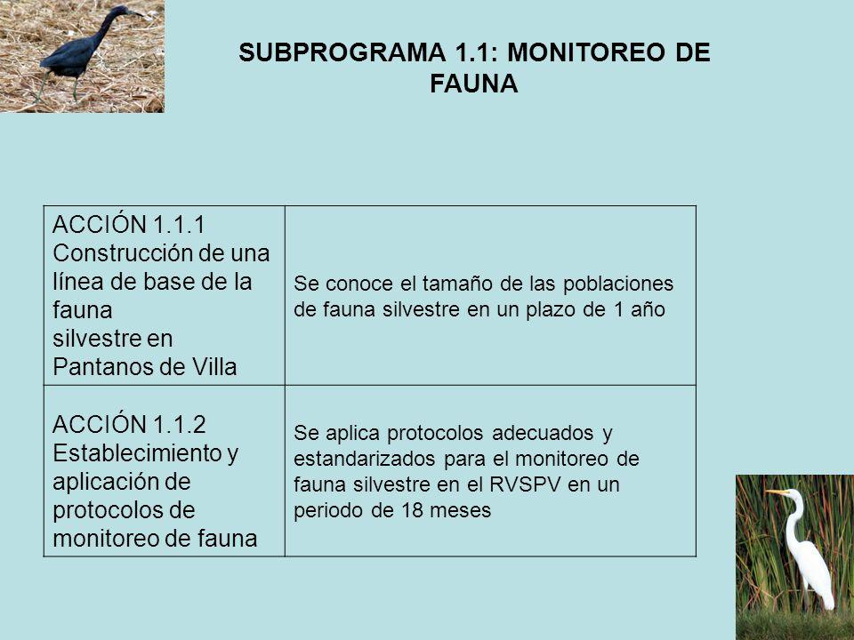 SUBPROGRAMA 1.1: MONITOREO DE FAUNA