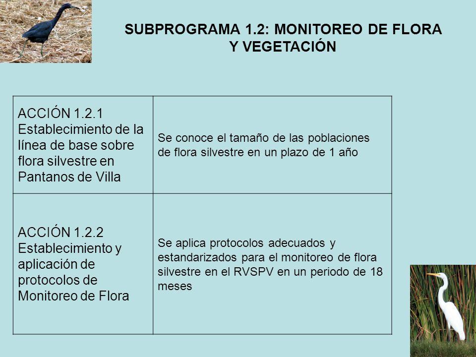 SUBPROGRAMA 1.2: MONITOREO DE FLORA Y VEGETACIÓN