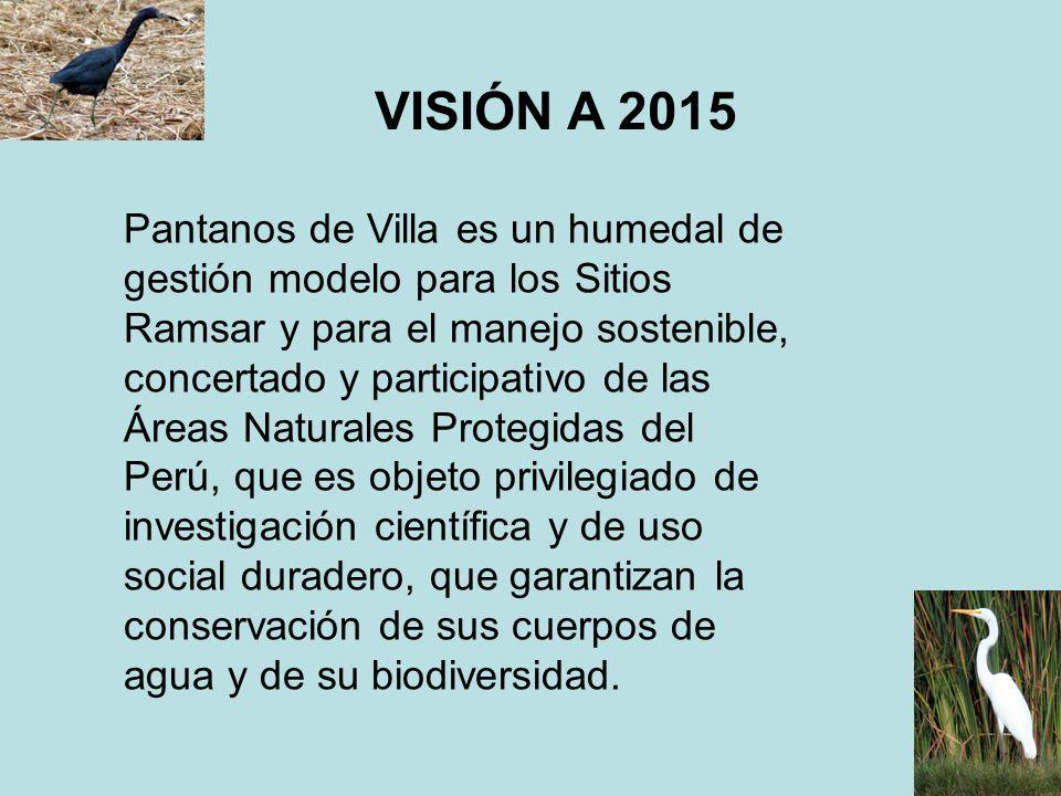 VISIÓN A 2015