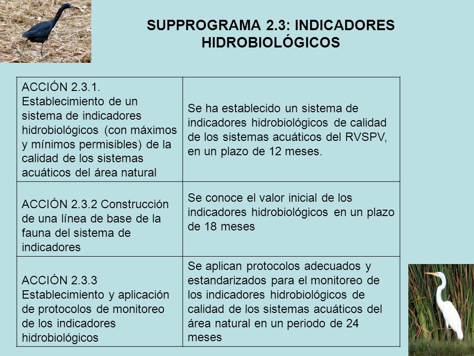 SUPPROGRAMA 2.3: INDICADORES HIDROBIOLÓGICOS
