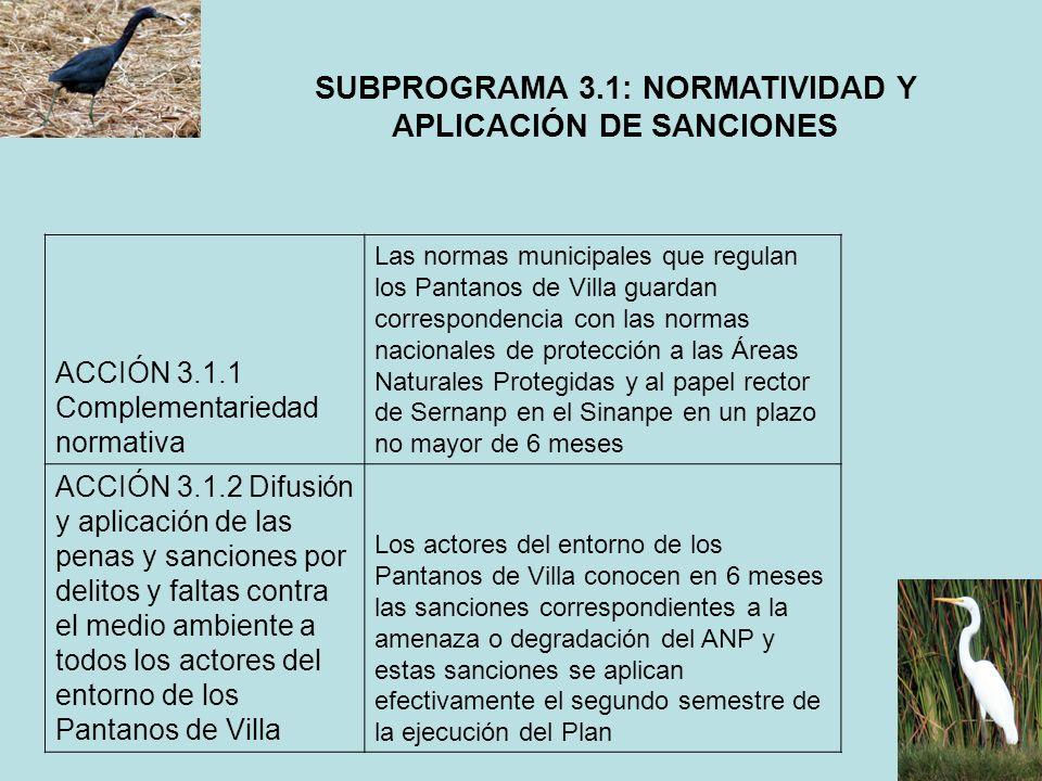 SUBPROGRAMA 3.1: NORMATIVIDAD Y APLICACIÓN DE SANCIONES
