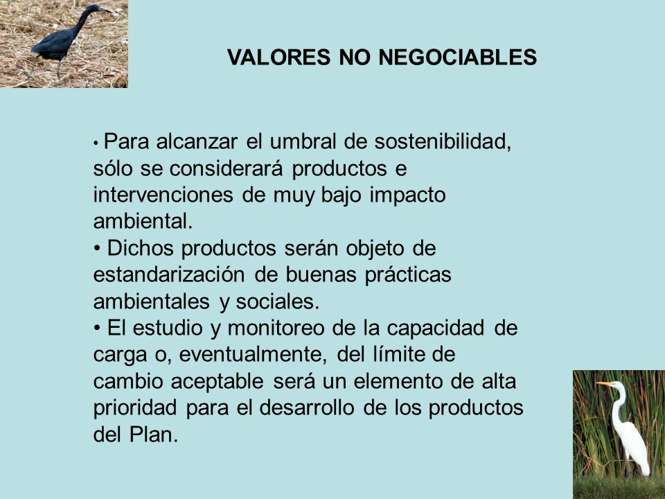 VALORES NO NEGOCIABLES