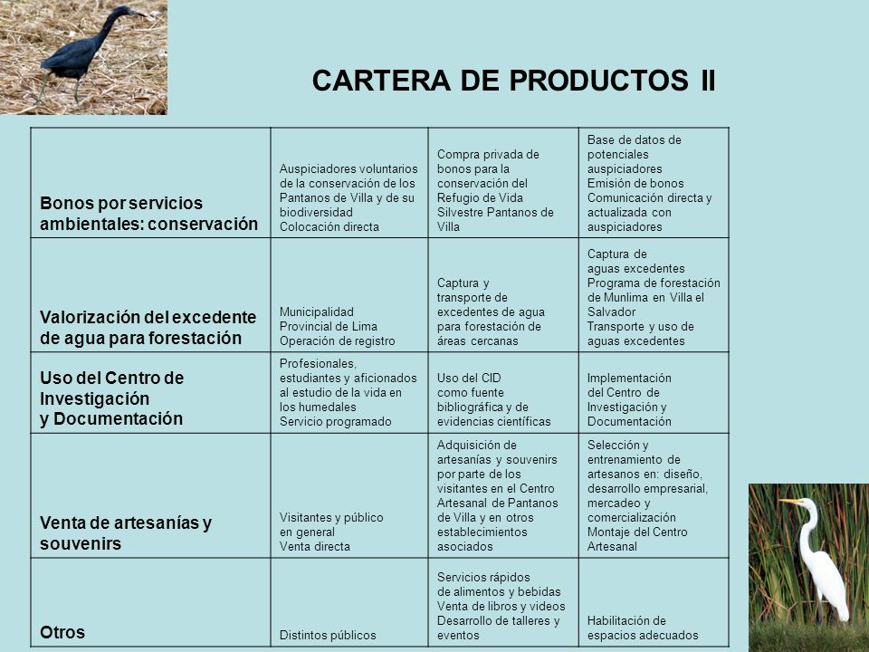 CARTERA DE PRODUCTOS II