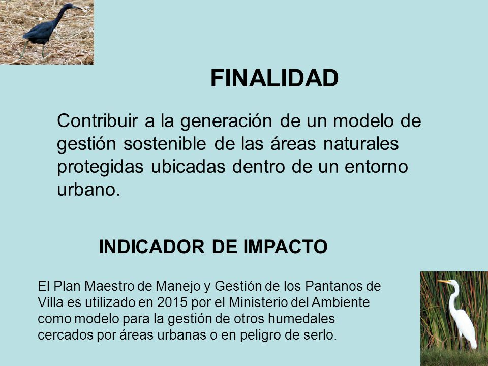 FINALIDAD Contribuir a la generación de un modelo de gestión sostenible de las áreas naturales protegidas ubicadas dentro de un entorno urbano.