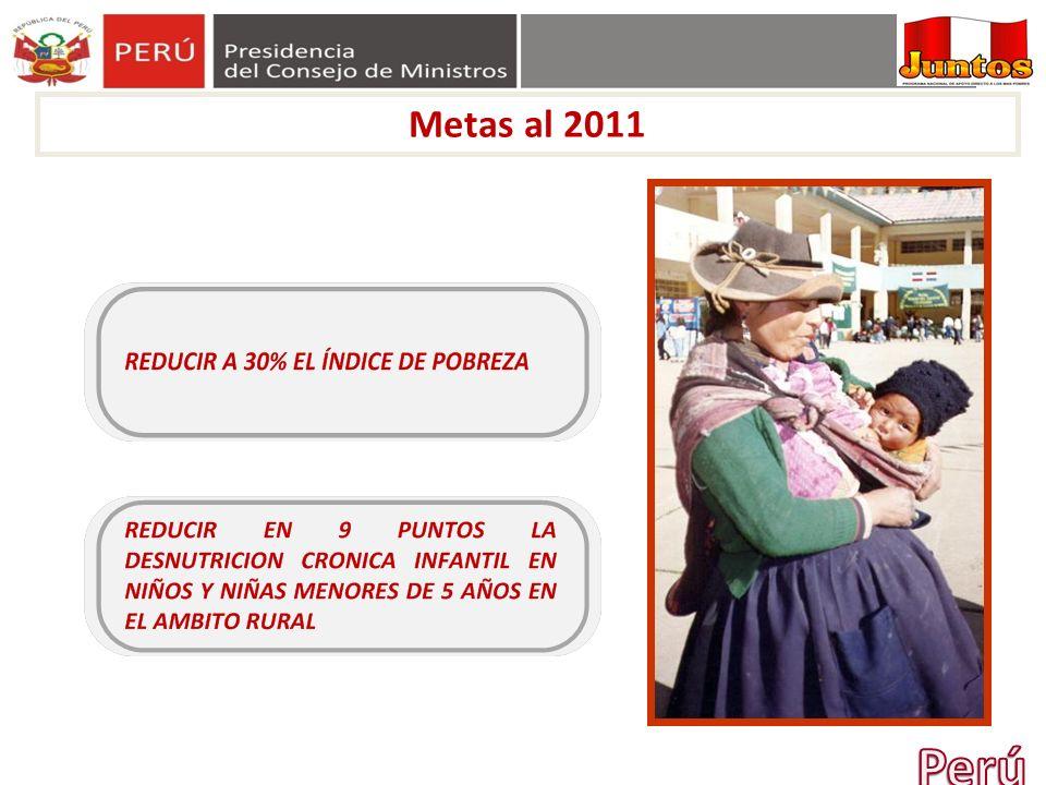 Metas al 2011 Perú