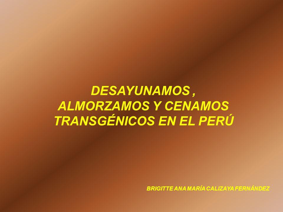 DESAYUNAMOS , ALMORZAMOS Y CENAMOS TRANSGÉNICOS EN EL PERÚ