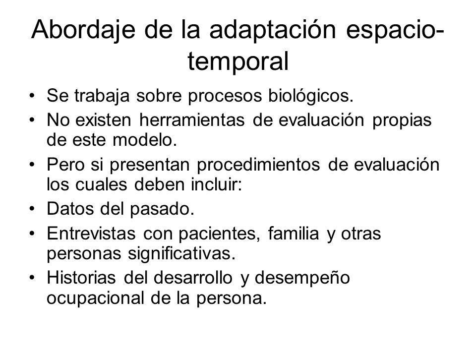 Abordaje de la adaptación espacio-temporal