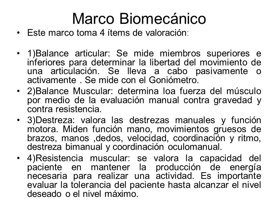 Marco Biomecánico Este marco toma 4 ítems de valoración: