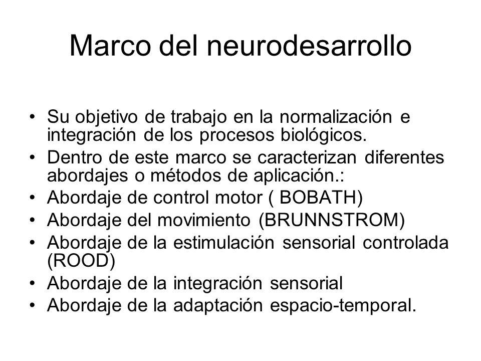 Marco del neurodesarrollo