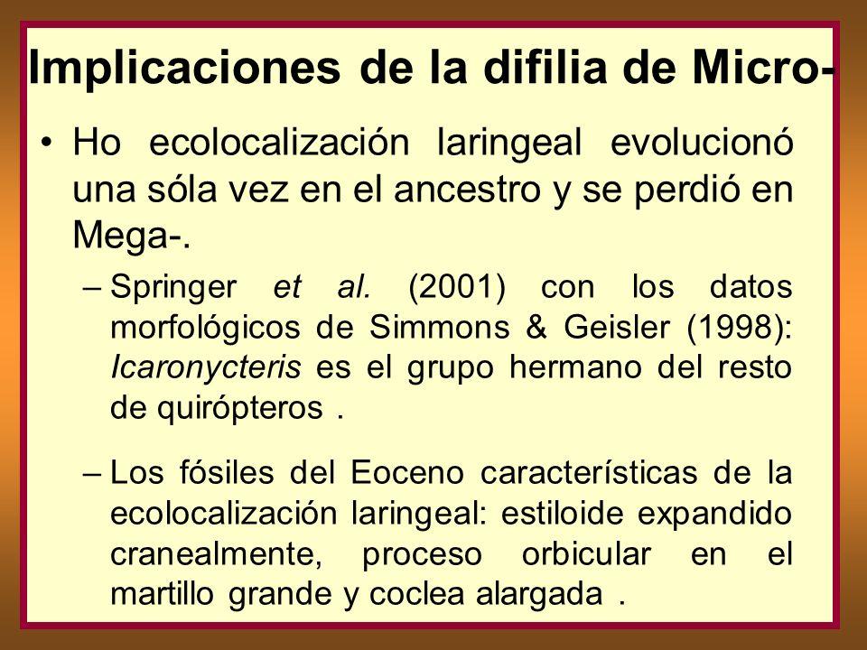 Implicaciones de la difilia de Micro-