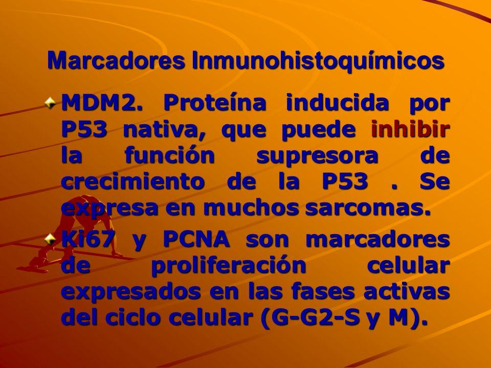 Marcadores Inmunohistoquímicos