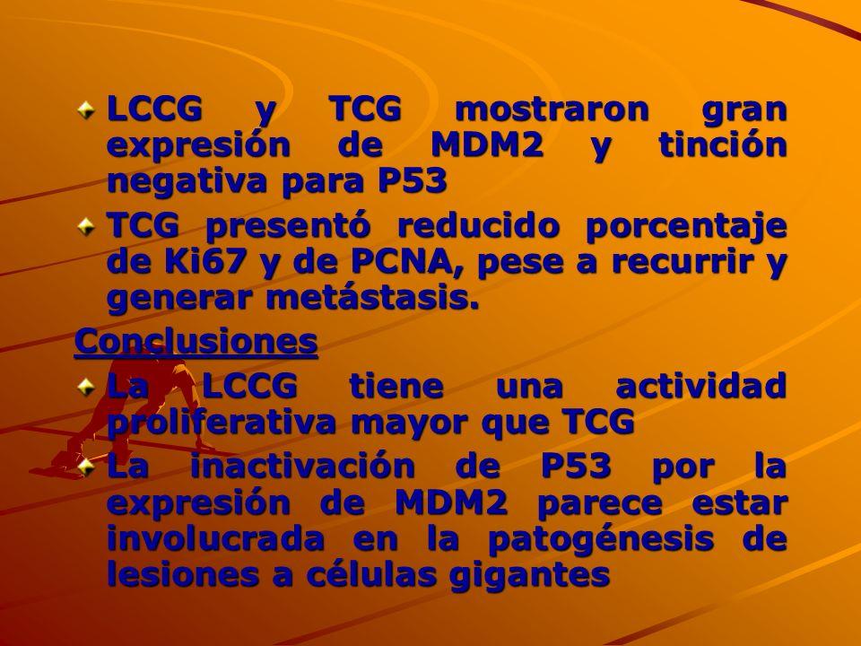 LCCG y TCG mostraron gran expresión de MDM2 y tinción negativa para P53