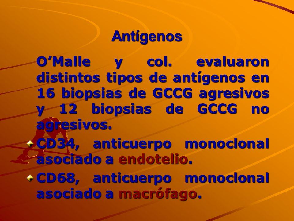 AntígenosO'Malle y col. evaluaron distintos tipos de antígenos en 16 biopsias de GCCG agresivos y 12 biopsias de GCCG no agresivos.