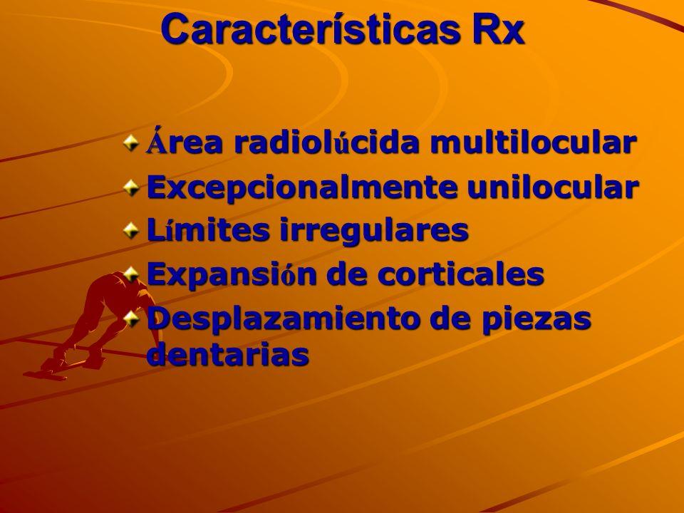 Características Rx Área radiolúcida multilocular