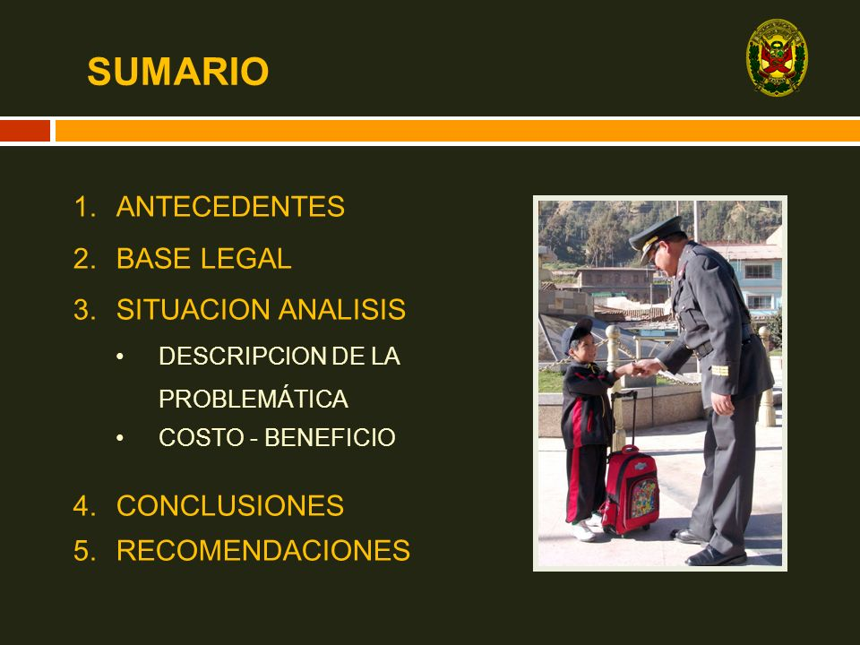 SUMARIO ANTECEDENTES BASE LEGAL SITUACION ANALISIS CONCLUSIONES