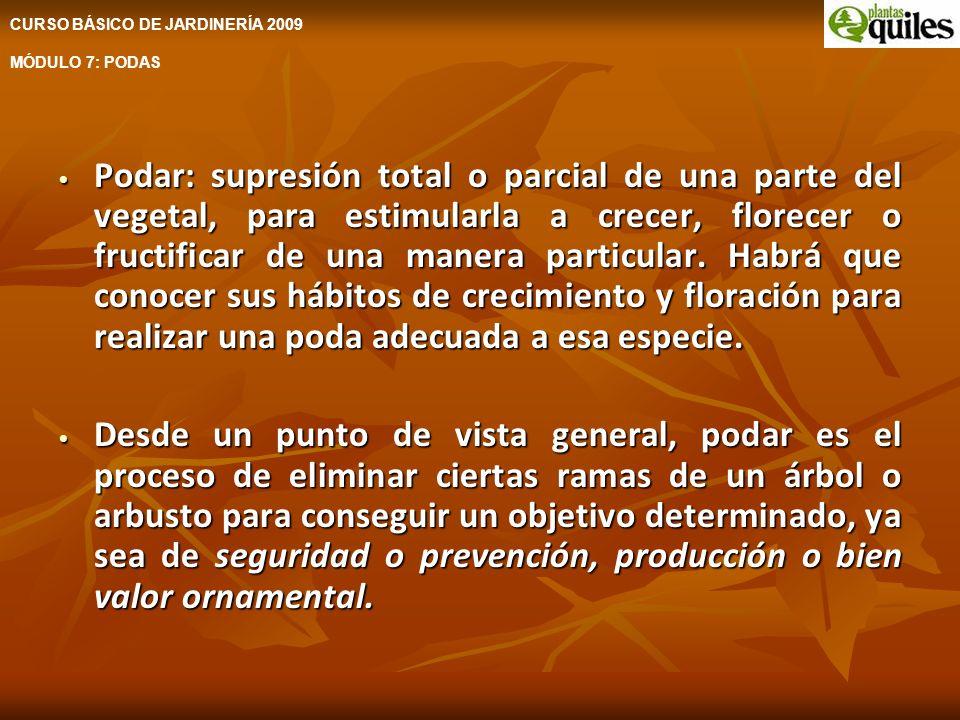 CURSO BÁSICO DE JARDINERÍA 2009