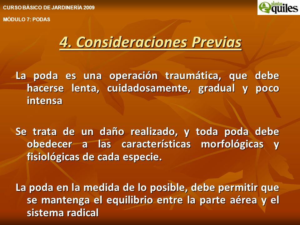 4. Consideraciones Previas