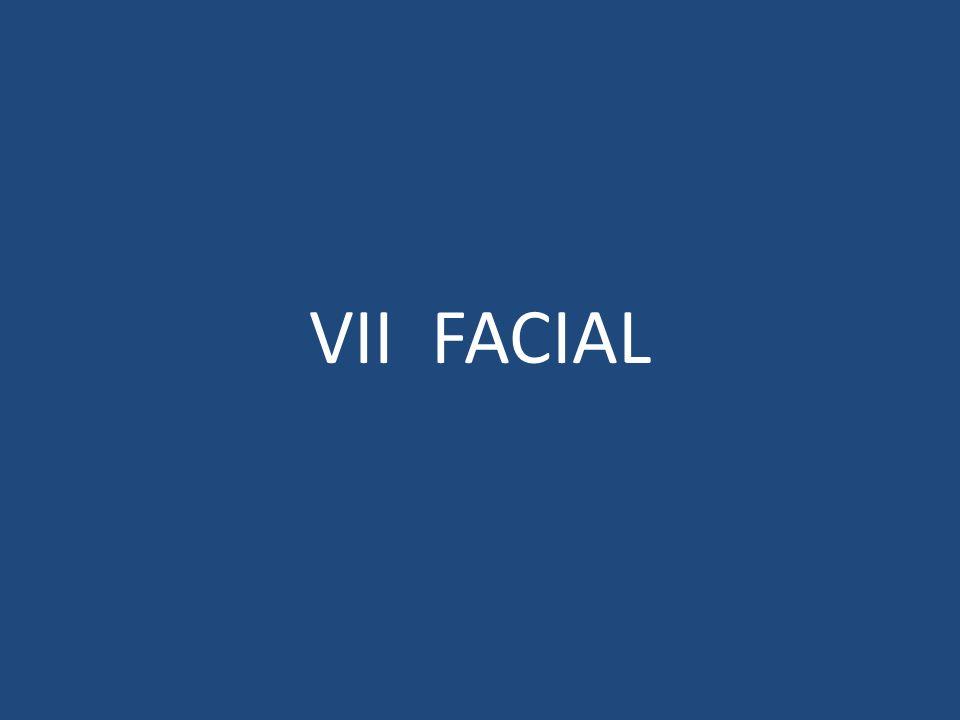 VII FACIAL