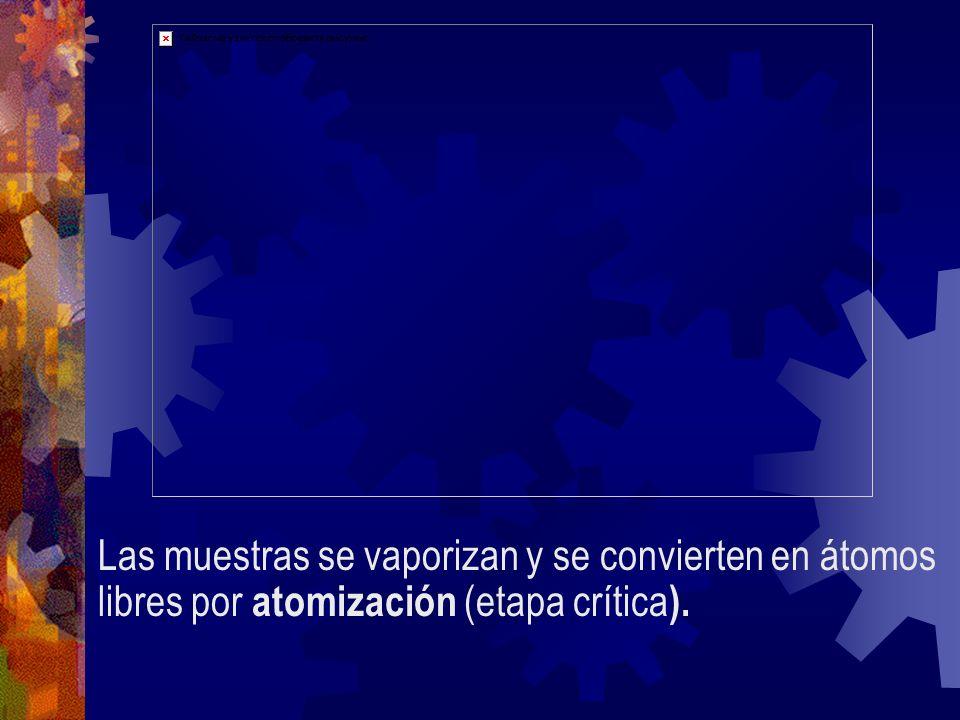 Las muestras se vaporizan y se convierten en átomos libres por atomización (etapa crítica).