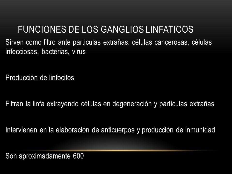 Funciones de los ganglios linfaticos