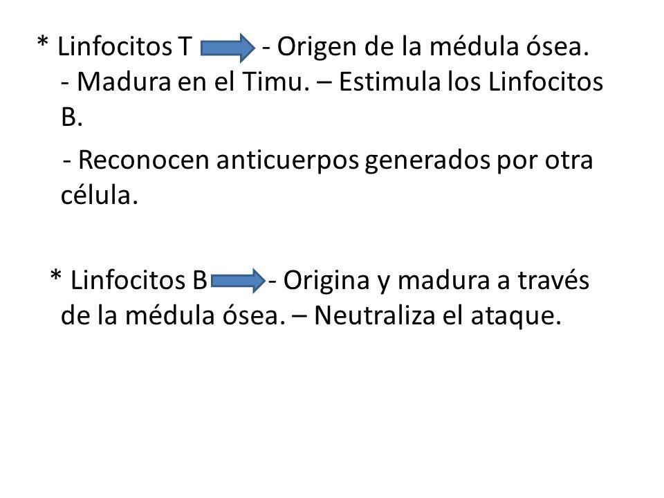 Linfocitos T - Origen de la médula ósea. - Madura en el Timu