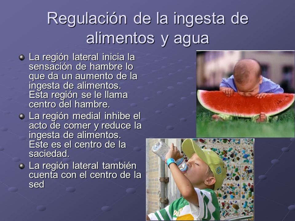 Regulación de la ingesta de alimentos y agua