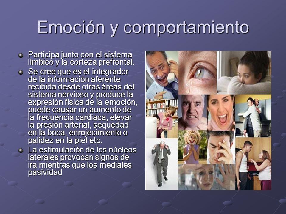 Emoción y comportamiento