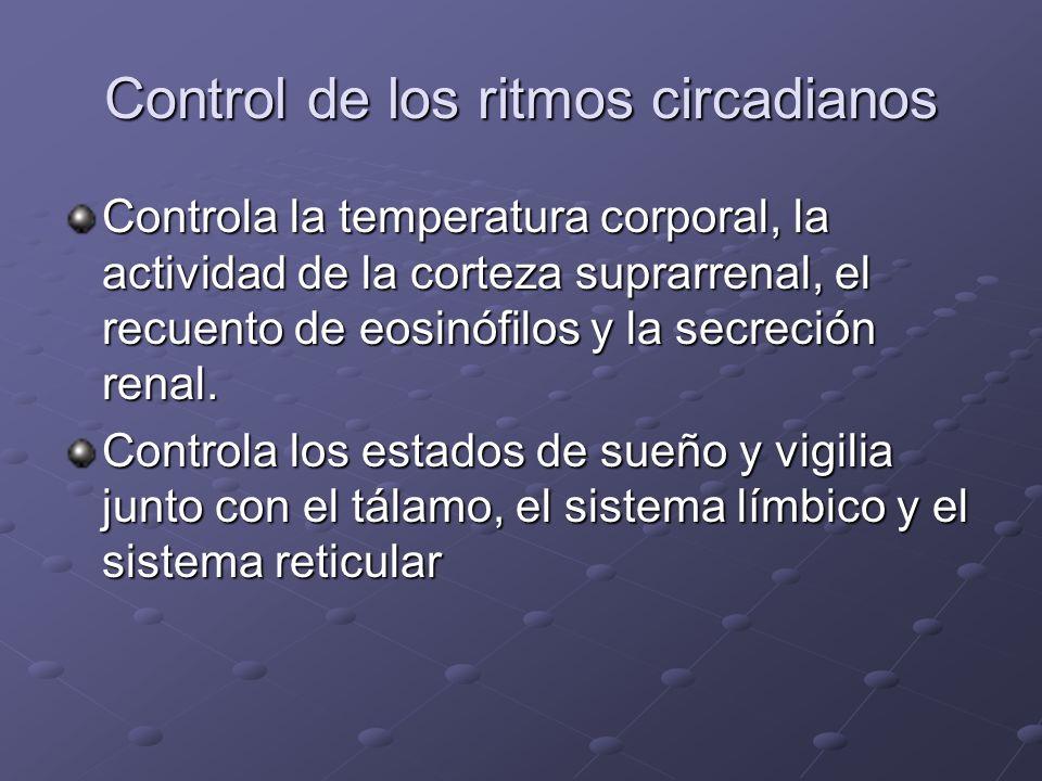 Control de los ritmos circadianos