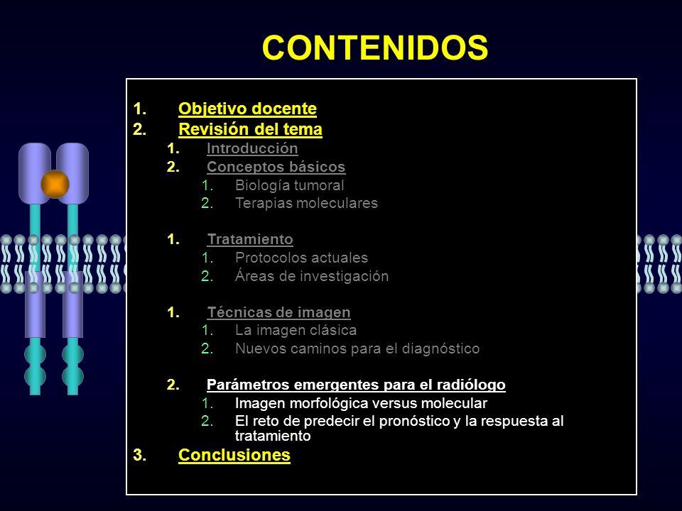 CONTENIDOS Objetivo docente Revisión del tema Conclusiones