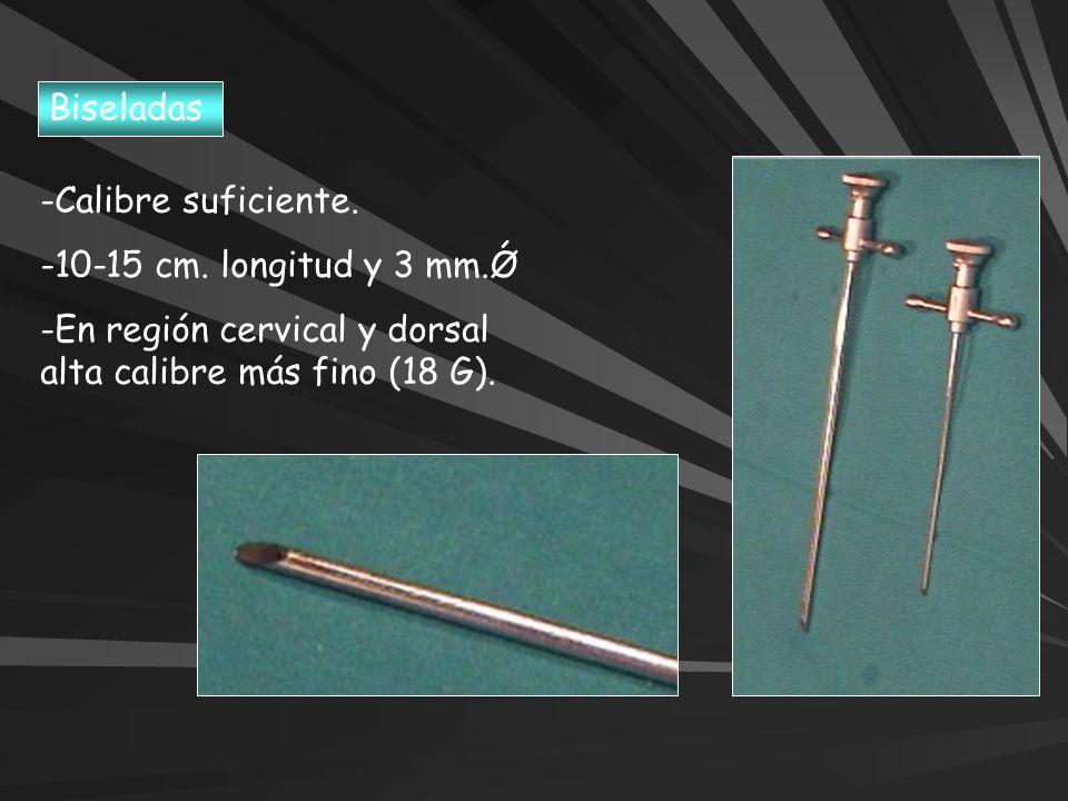 Biseladas Calibre suficiente. 10-15 cm. longitud y 3 mm.Ǿ.