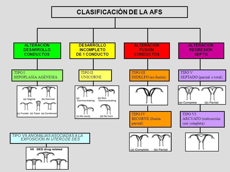 CLASIFICACIÓN DE LA AFS