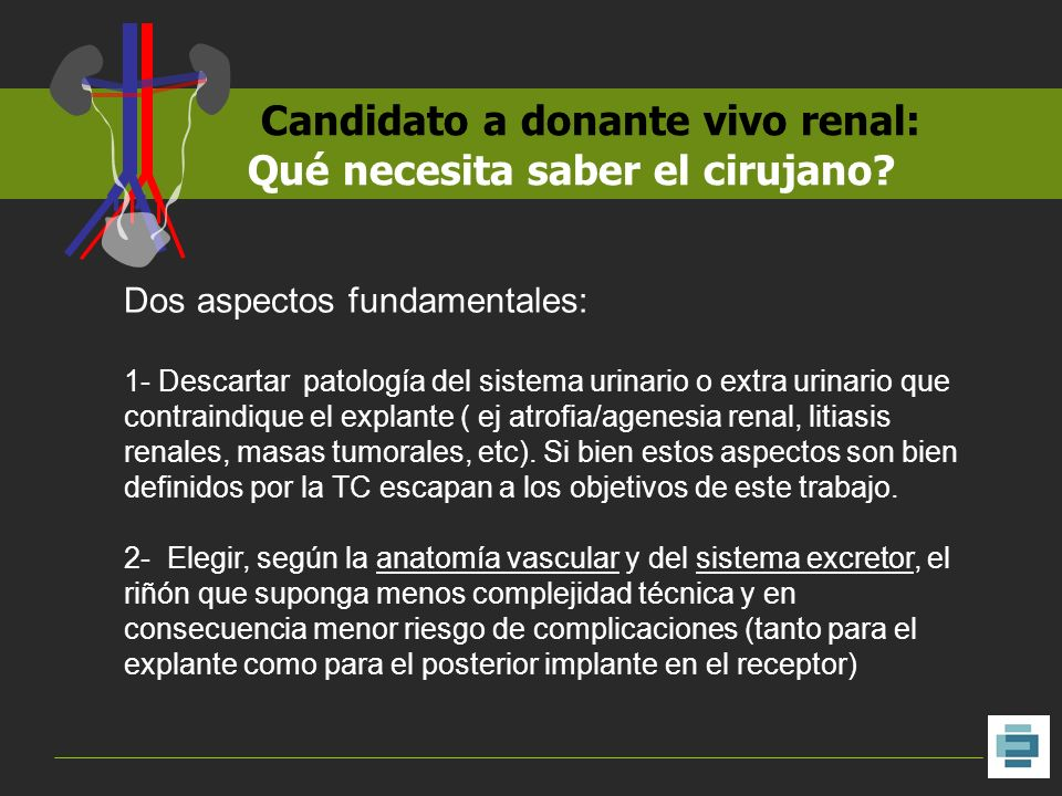 Candidato a donante vivo renal: