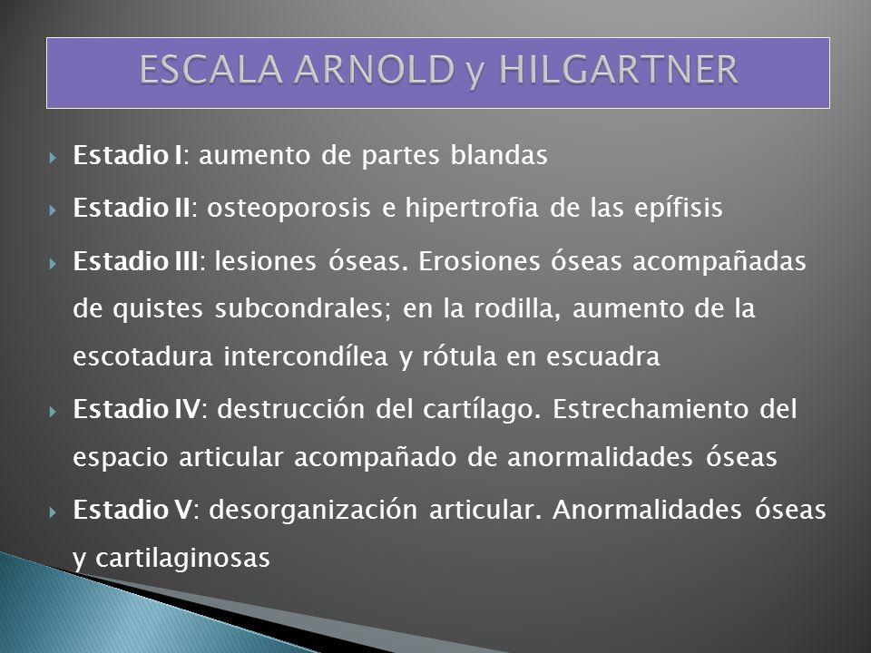 ESCALA ARNOLD y HILGARTNER