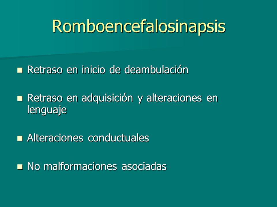 Romboencefalosinapsis