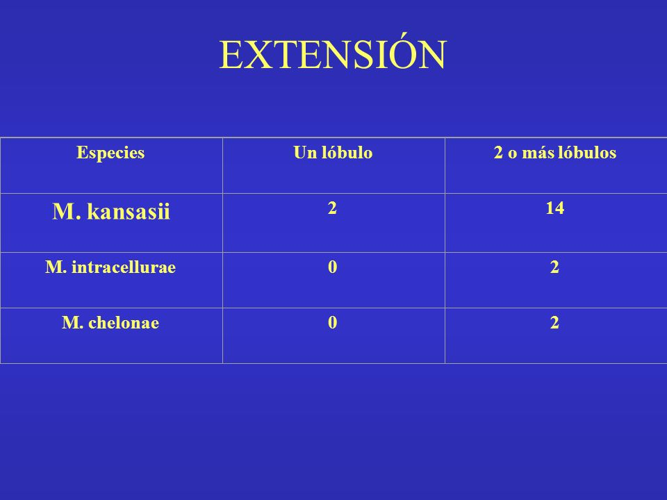 EXTENSIÓN M. kansasii Especies Un lóbulo 2 o más lóbulos 2 14