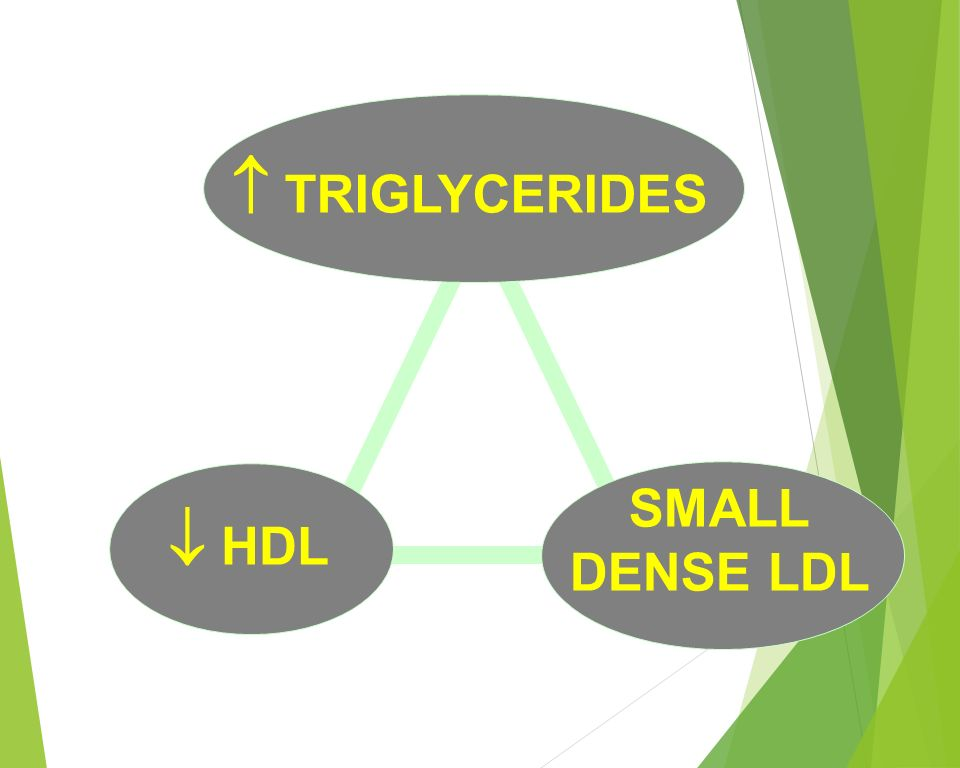 relationship of triglyceride and vldl