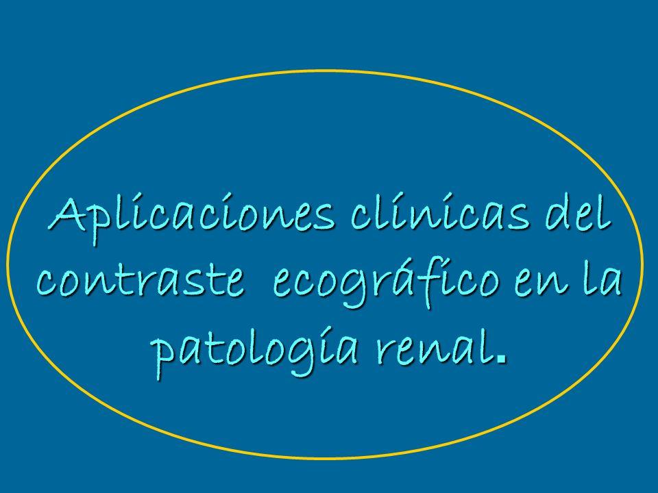 Aplicaciones clínicas del contraste ecográfico en la patología renal.