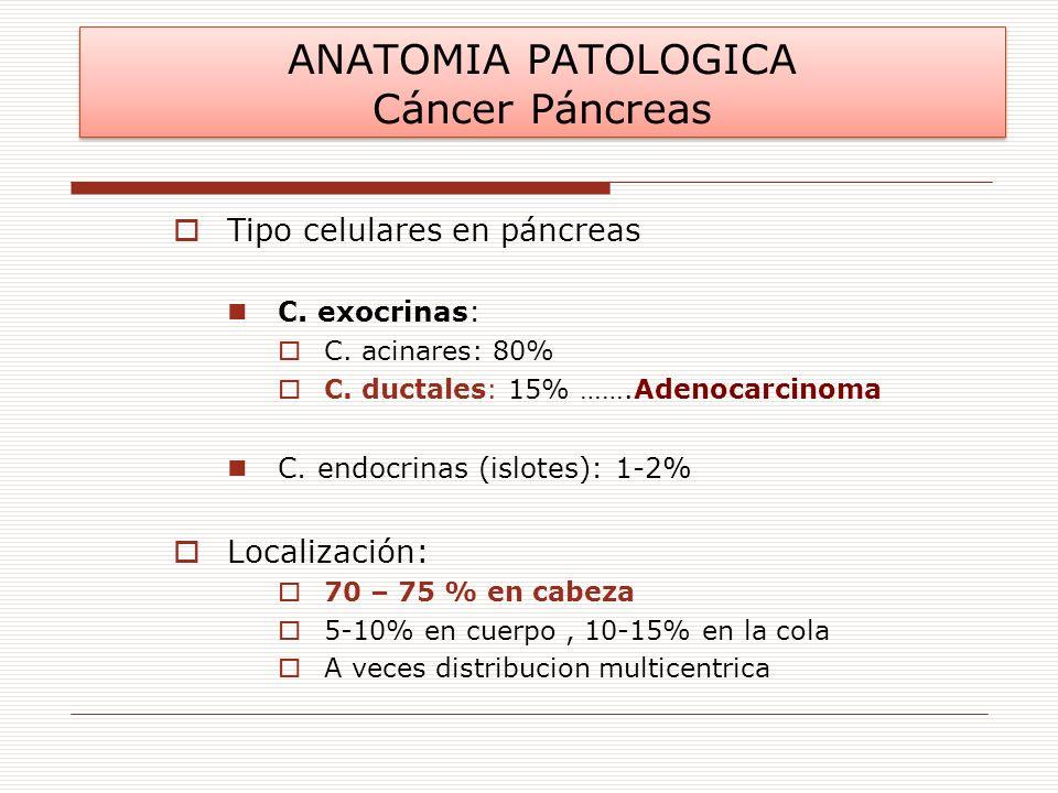 ANATOMIA PATOLOGICA Cáncer Páncreas