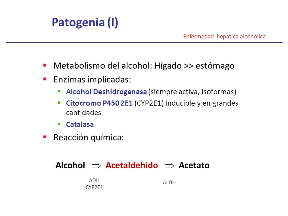 Patogenia (I) Metabolismo del alcohol: Hígado >> estómago
