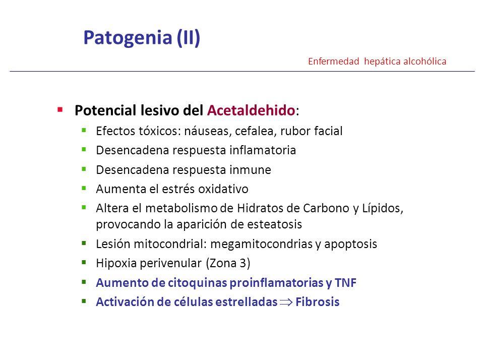 Patogenia (II) Potencial lesivo del Acetaldehido: