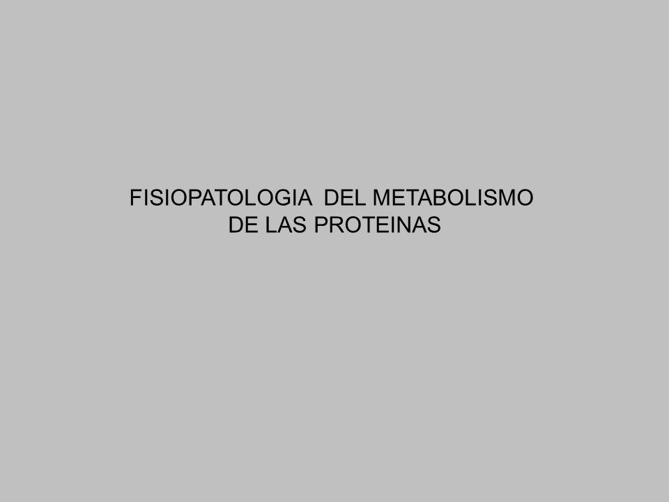 FISIOPATOLOGIA DEL METABOLISMO