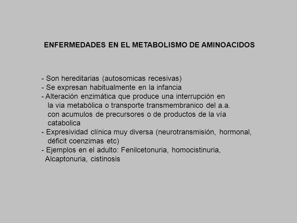 ENFERMEDADES EN EL METABOLISMO DE AMINOACIDOS