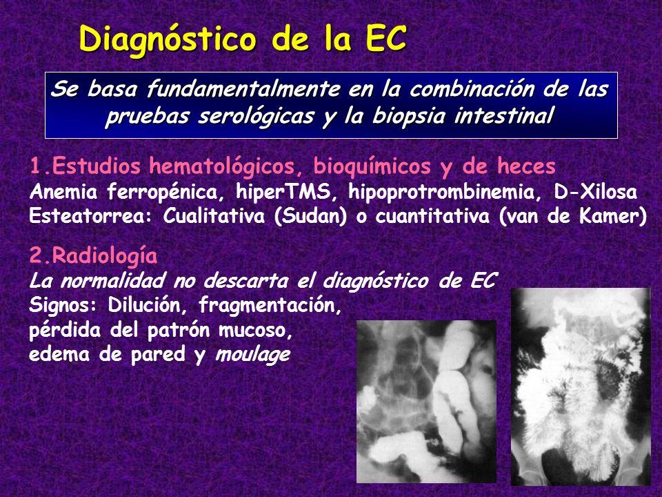 Diagnóstico de la ECSe basa fundamentalmente en la combinación de las pruebas serológicas y la biopsia intestinal.