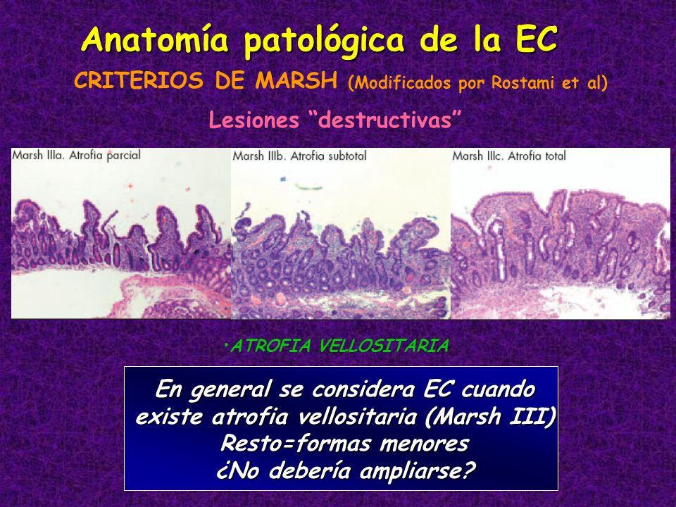 Anatomía patológica de la EC