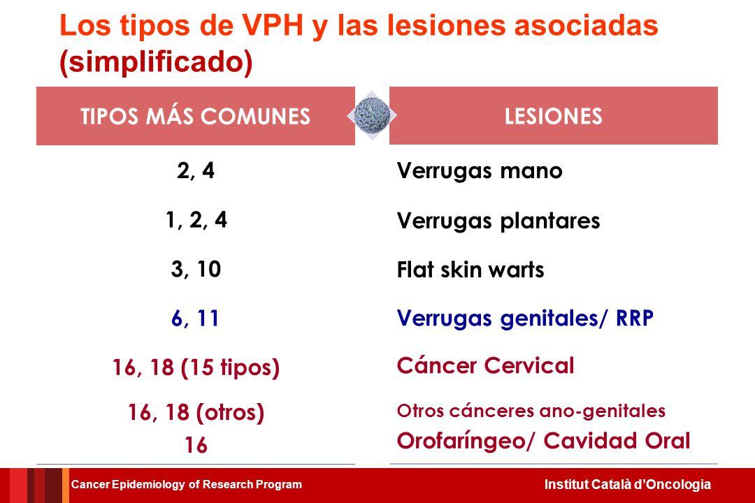 Los tipos de VPH y las lesiones asociadas (simplificado)